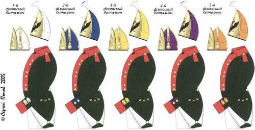 Схема цветовых различий обмундирования флотских батальонов Балтийского корабельного флота. Ноябрь 1796–1802гг. Компьютерная графика С.А. Попова.