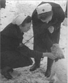 Сестры выгуливают фокстерьера старшего полевого врача, который кроме работы в лазарете продолжал работать в своей частной курортной практике.