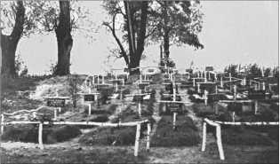 Немецкое солдатское кладбище возле Новгорода. На березовых крестах аккуратные таблички с именами.