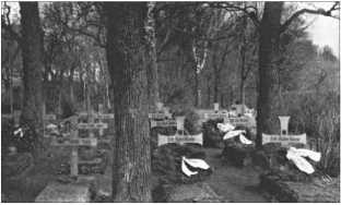 Немецкое солдатское кладбище возле Нарвы. Здесь также лежат павшие солдаты из 29-го танкового полка, погибшие в боях на Волховском фронте или в котле под Ораниенбаумом у дороги зимой 1941/42 года.