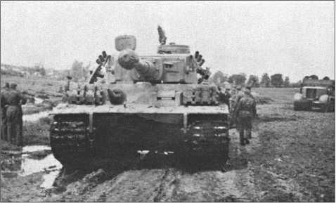 Учения по спасению 114-го «Тигра» Альфреда Руббеля. Он застрял в болотистой низине, его гусеницы забиты грязью и больше не хватают.