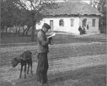 Хельмут Михаэлис ведет теленка на веревке. Он погружен в чтение и не видит ничего вокруг.