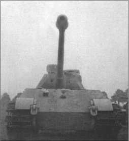 1-я рота 503-го тяжелого танкового батальона была первой немецкой танковой частью, которая получила«Тигр II», который позже называли «Королевский Тигр». У всех этих танков была еще башня «Порше».
