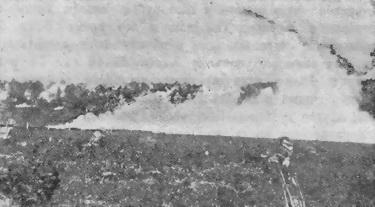Телеграмма №268 от 4 ноября 1917 года