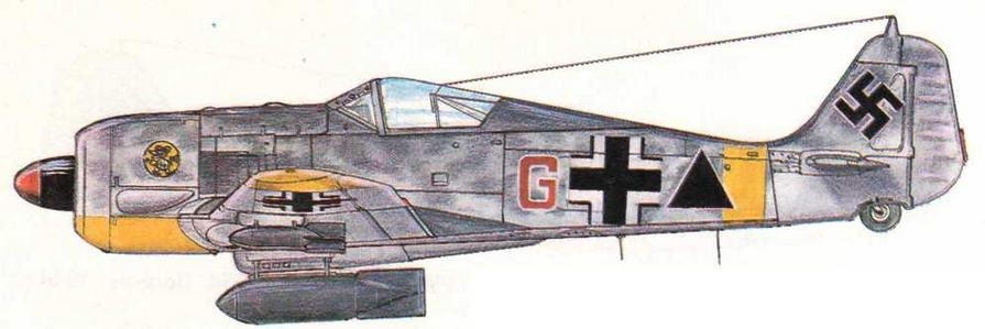 FW190F-2 из 5./SG1. Польша, 1943 г.