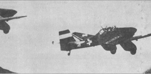Цвета окраски венгерских «Антонов» остались неизвестными, но цвета маркировки вертикального оперения не представляют загадки — красно-бело-зеленые полосы (цвета национального флага Венгрии), опознавательные знаки — черно-белые. В боях на Восточном фронте венгерские ВВС широко использовали более позднюю модификацию «Штуки» — Ju-87B.