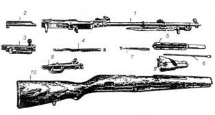 Основные части и механизмы самозарядного карабина СКС: