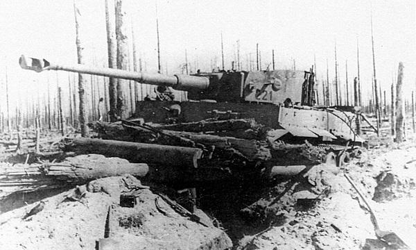 «Тигр» №221 из состава 502-го тяжёлого танкового батальона, подбитый частями Ленинградского фронта. 1943 год.