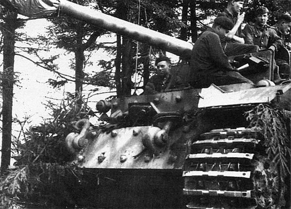 «Фердинанд» из 653-го тяжёлого дивизиона истребителей танков на исходной позиции накануне операции «Цитадель». Июль 1943 года.